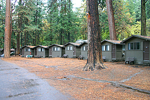 Higher Priced Cabins (sorry, No Interior Shot). They Have Running Water And  A Bit More Space.